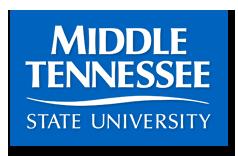 Twenty Three DeKalb Students on Dean's List at MTSU