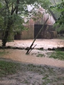 """Caplinger Hollow Road, Liberty : Photo by Crystal Neal who said """"Our two dogs got trapped in the barn. The water rose so quickly we couldn't cross to get them. Luckily they are both ok""""."""