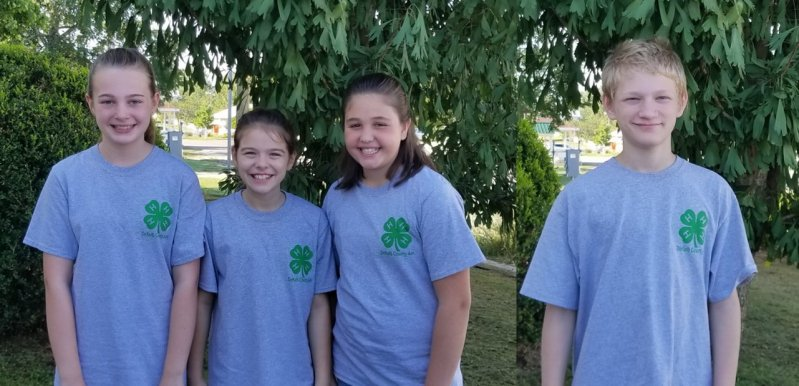 Junior Team Olivia Gilley, Cali Agee, and Laura Magness placed 6th at the regional poultry judging contest. Will Mathis competed in the junior high division.