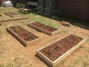 A group of students at DeKalb County High School began work Thursday developing an Outdoor Learning Space and Garden on campus in conjunction with Beautification Day at the school. When finished the venue will serve as an outdoor collaborative work area f
