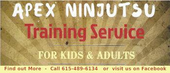 Apex Ninjutsu
