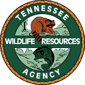 Tennessee Hunter Education Giving Option for Online Completion During COVID-19 Pandemic
