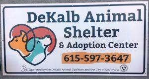 DeKalb Animal Coalition