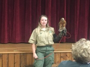 Mason Robinson, Seasonal Interpretive Park Ranger at Edgar Evins State Park brought in a live red shouldered hawk for the children to see last Thursday on final day of Library Summer Reading Program at the County Complex